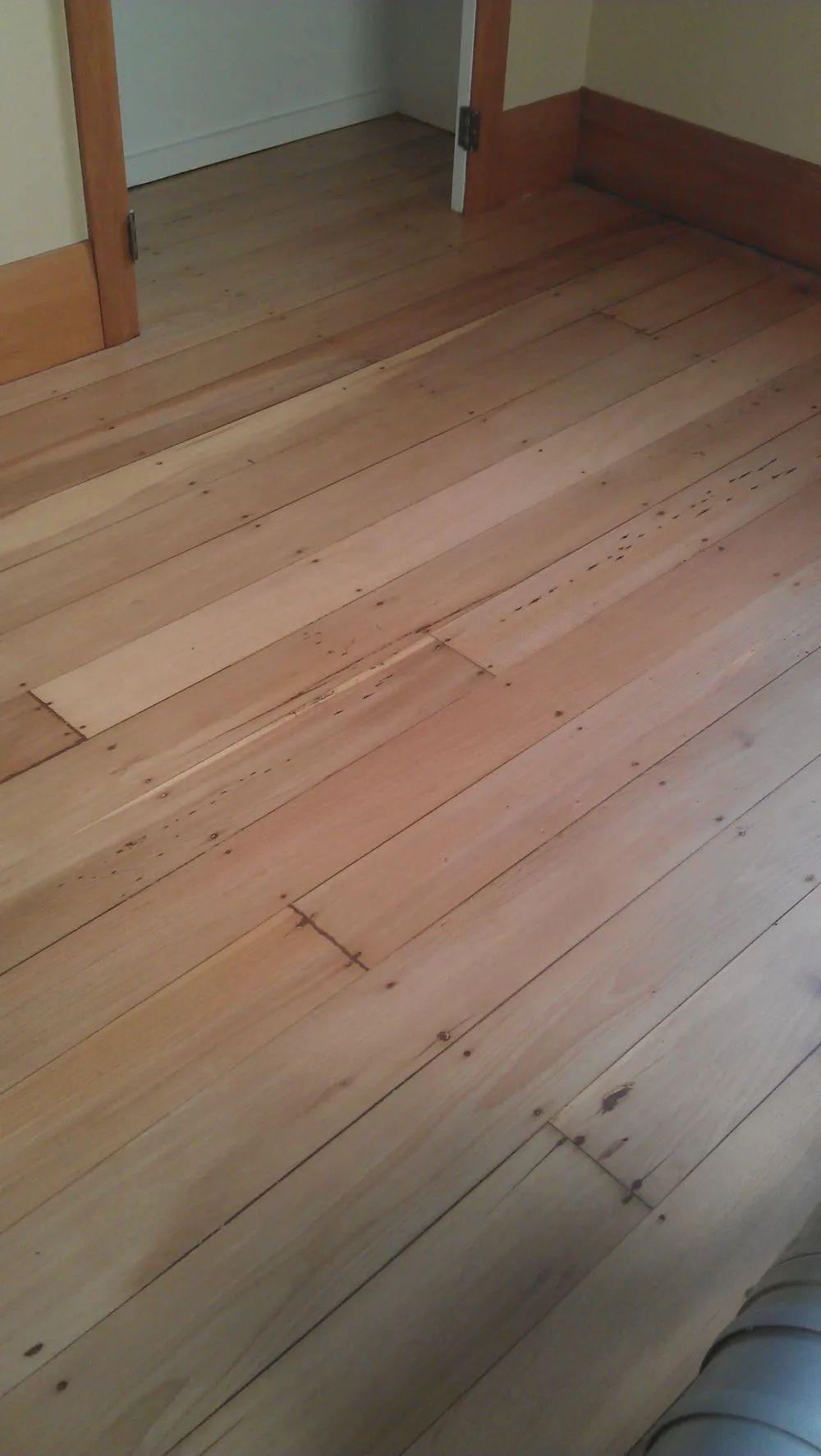 floor sanders
